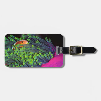 Anemone Fish Hiding In Anemone, Mozambique 2 Luggage Tag