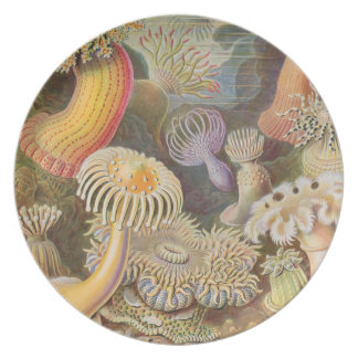 Anemone Garden Party Plate