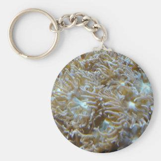 anemone key chain