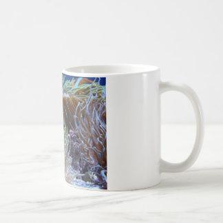 anemone, with peeking clown fish coffee mug