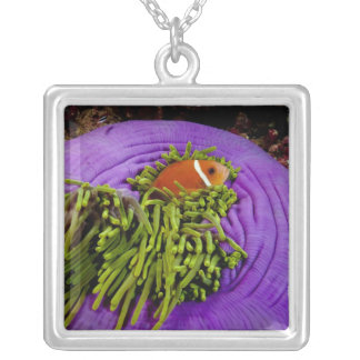 Anemonefish and large anemone silver plated necklace