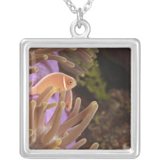 anemonefish, Scuba Diving at Tukang Silver Plated Necklace