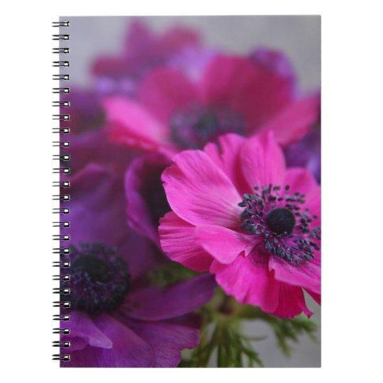 anemones notebook