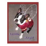 Angel Boston Terrior Post Cards