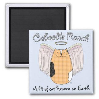 Angel Cat Magnet
