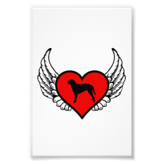 Angel Curly Coated Retriever dog winged Heart Photographic Print