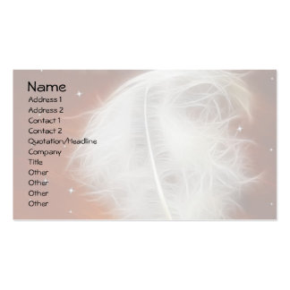 Angel Feather 2 Pack Of Standard Business Cards