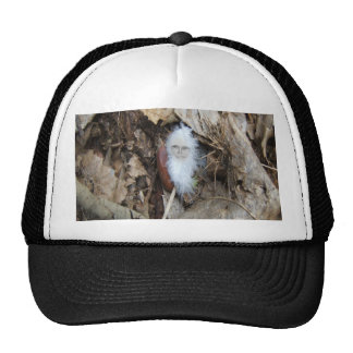 Angel Feather Cap