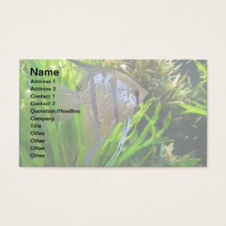Angel Fish Business Card