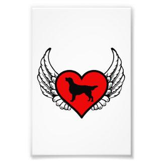 Angel Flat-Coated Retriever dog winged Heart Photograph