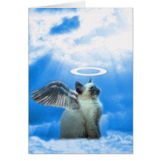 Angel Kitten Gifts Card