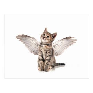 angel kitty post card