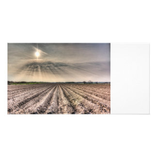 Angel Light Farm Photo Card