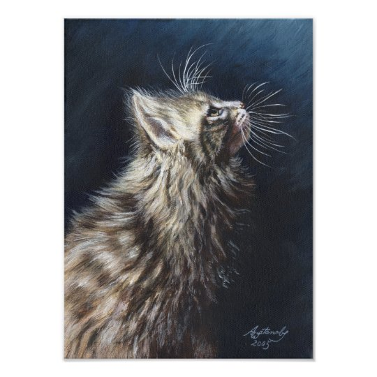 Angel Light Maine Coon Cat Art poster