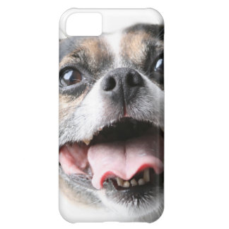 Angel of a Mutt Doggy - Mixed Breed - Canine iPhone 5C Cases