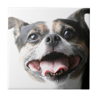 Angel of a Mutt Doggy - Mixed Breed - Canine Small Square Tile