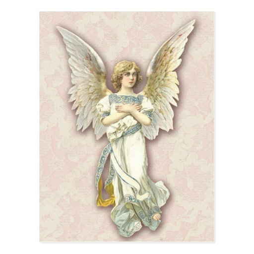 Angel On Pink Lace Post Card