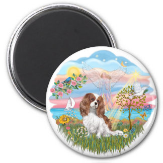 Angel Star - Blenheim Cavalier Magnet
