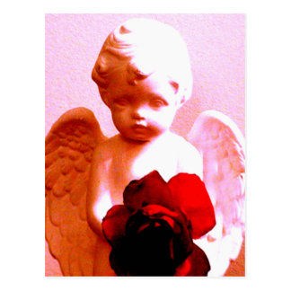 Angel With A Rose Postcards