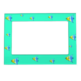 Angelfish Magnetic Frames