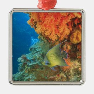 Angelfish swimming near orange soft coral, Bligh Christmas Ornament