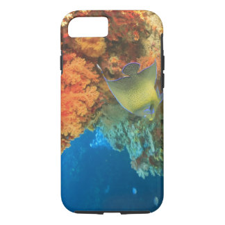 Angelfish swimming near orange soft coral, Bligh iPhone 8/7 Case