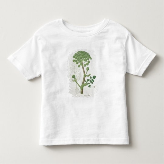 Angelica Archangelica from 'Phytographie Medicale' Toddler T-Shirt