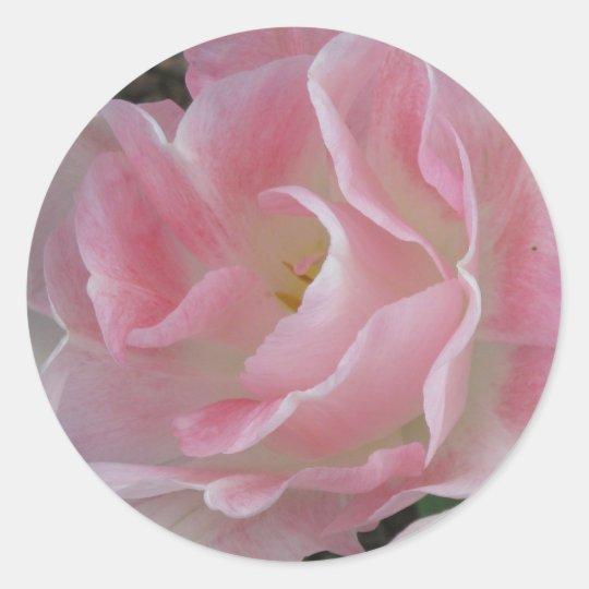 Angelique Tulip Classic Round Sticker