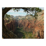 Angels Landing Posters