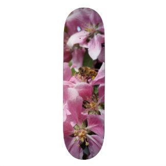Angery Honey Bee On Pink Crabapple blossom Skate Decks
