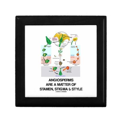 Angiosperms Are A Matter Of Stamen Stigma Style Gift Boxes