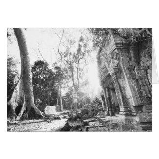 Angkor Cambodia, Details Ta Prohm Card
