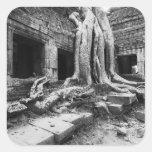 Angkor Cambodia, Ta Prohm Tree Square Sticker