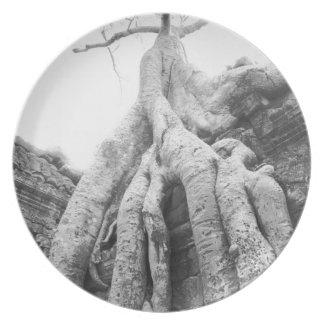 Angkor Cambodia, Tree Ta Prohm Plate