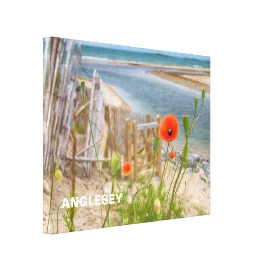 Anglesey Wales Scenic View Beach And Wild Poppies