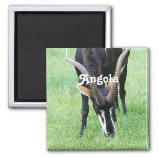 Angola Sable Antelope Magnet