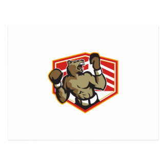 Angry Bear Boxer Boxing Retro Postcards