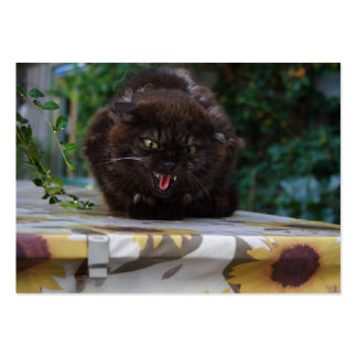 Angry Black Cat Pack Of Chubby Business Cards