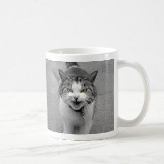 Angry Cat Basic White Mug