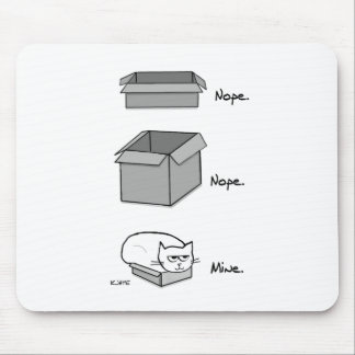 Angry Cat Totally Fits in this Box Mouse Pad