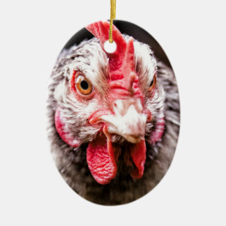 Angry Chicken Ceramic Oval Decoration