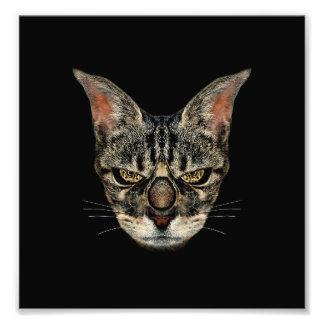 Angry Cyborg Cat Photo Art