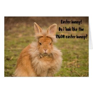 Angry Easter Bunny Funny Humor Greeting Card