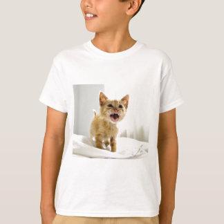 Angry Kitten Tshirts