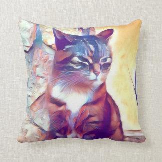 Angry kitty cushion