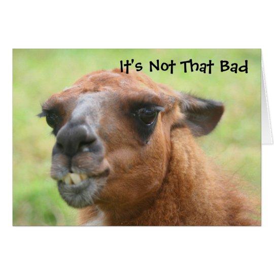 Angry Llama Humourous 50th Birthday Card