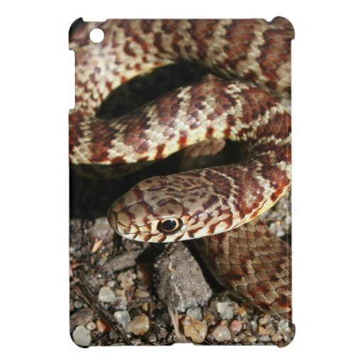 Angry Looking Snake iPad Mini Cover