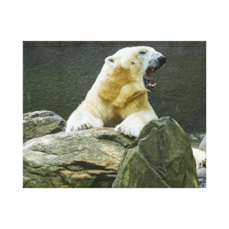 Angry Polar Bear Canvas Print