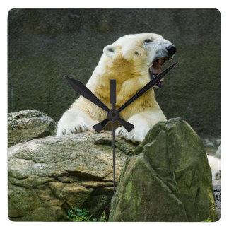 Angry Polar Bear Square Wall Clock