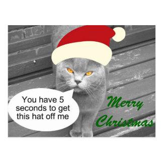 Angry Santa Cat Post Cards